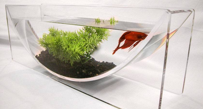 Betta Bowl Aqua Modern Tabletop Fish Tanks Zero Edge