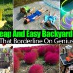 Cheap Easy Backyard Ideas Almost Genius