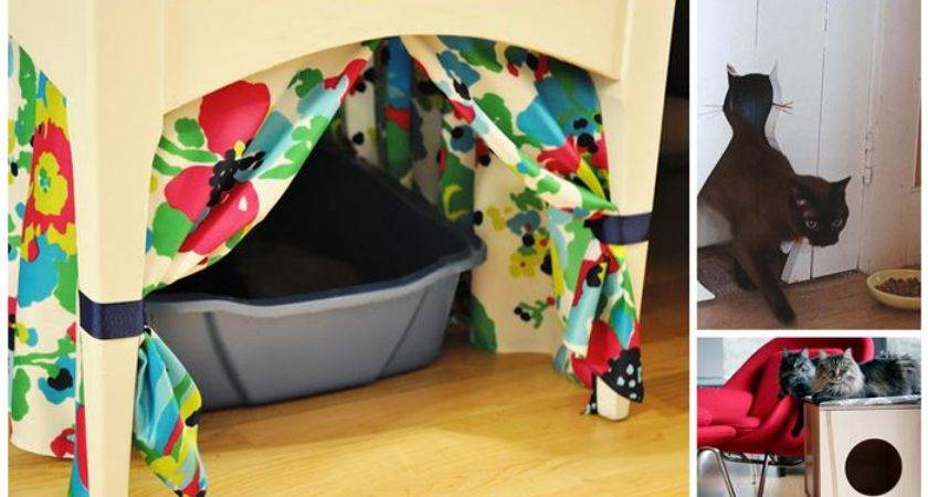 Creative Ways Hide Your Cat Litter Box Diply
