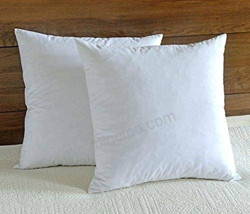 Feather Cushion Inserts Goose Couch