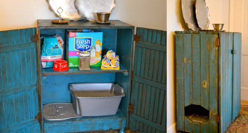 Lovely Side Creative Diy Projects Hide Litter Box