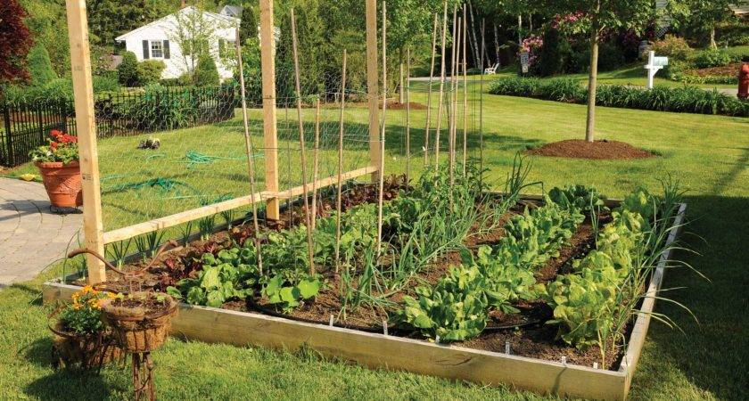 Raised Garden Bed Archives Grow Make Give